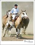 Gaucho horsemanship