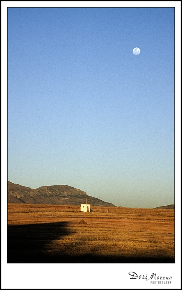 White Hut with Blue Moon (2004)