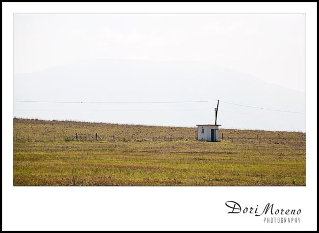 White Hut (2011)