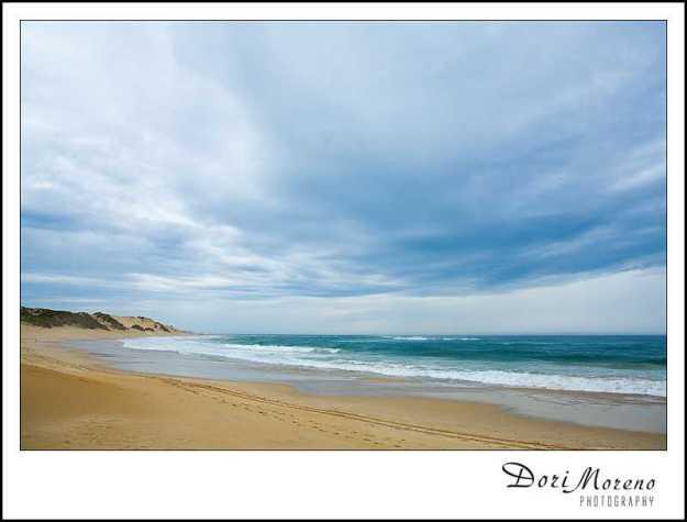 Sardinia - Port Elizabeth