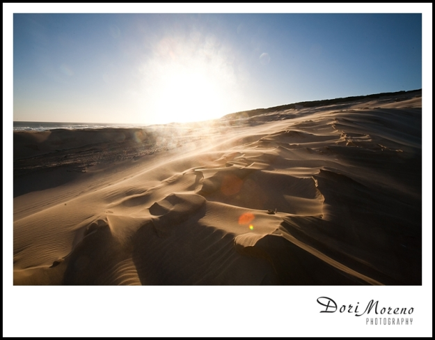 Golden light reflected off the sand dunes highlights the natural carvings.