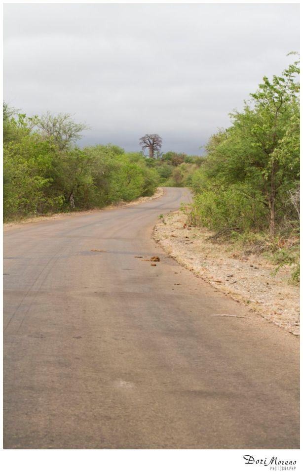 Leading road