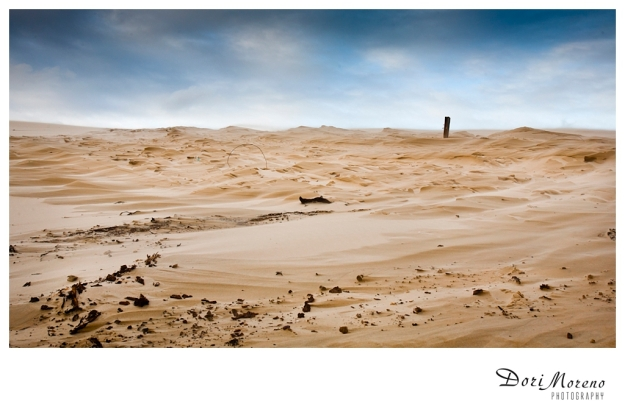 The wind whips up the sand on a large sand dune in Port Elizabeth