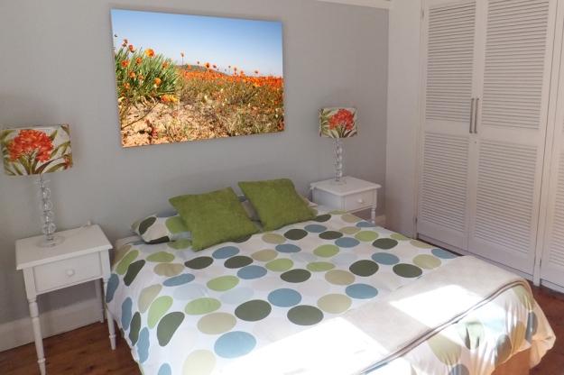 www.dorimoreno.com, daisies, Namaqualand, South Africa