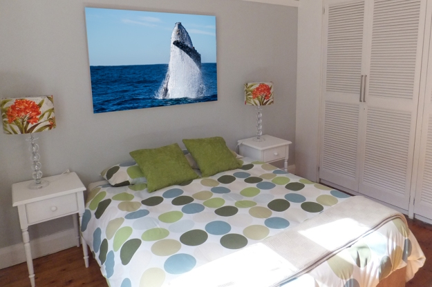 www.dorimoreno.com, South Africa, Humpback whale